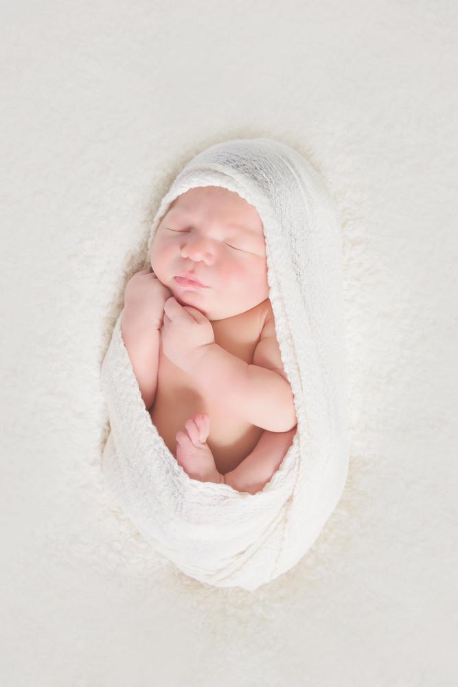 Newbornwebgallery 31